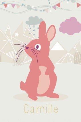 faire-part de naissance / les animaux / le lapin