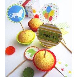 kit de décoration anniversaire / cirque