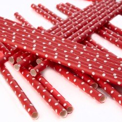 pailles (paper straws) / pois rouge x10