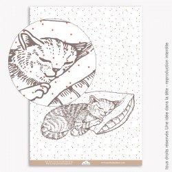 Papier Scrapbooking  Noel rouge chat