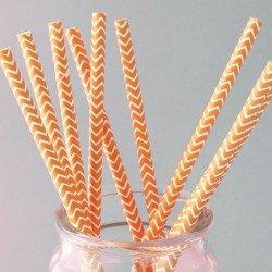pailles (paper straws) / chevrons oranges x10